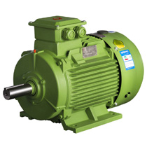 IE3 Asynchronous electric motor,induction motor